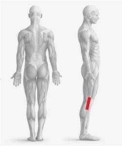 dolore esterno ginocchio